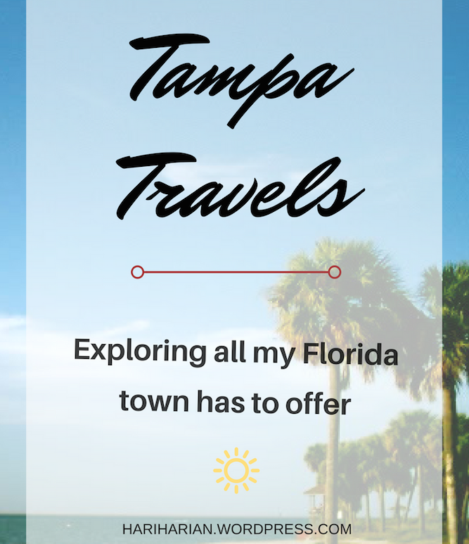 tampa travels pin