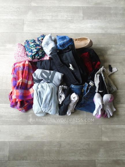 Luggage Clothing